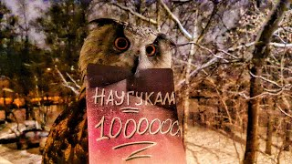 Eagle Owl Yoll has accUHUmulated a million people on the channel!