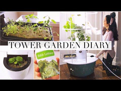 My Indoor Tower Garden Diary!