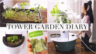 my-indoor-tower-garden-diary