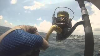 ГТ вилову риби та випуску キャッチ&リリース сім зірок РИФ 七星岩