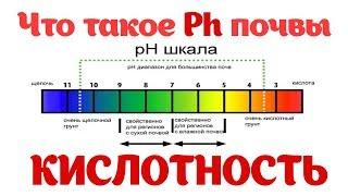 Ph Кислотность почвы. Как получить максимальный урожай? Определить ph почвы
