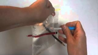 How to do the Ziplock Bag and Pencil Trick - How to Push a Pencil Through a Water Filled Plastic Bag