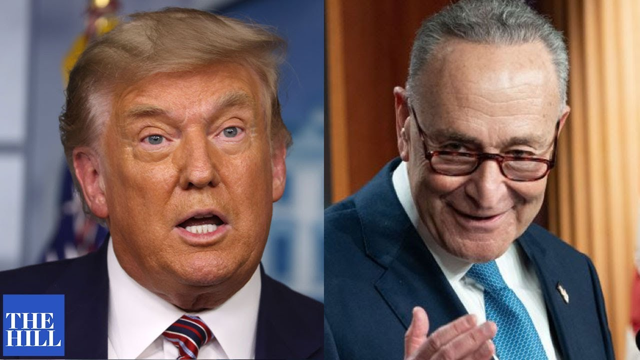 Chuck Schumer vows to bring BALANCE to judiciary after four years of Trump judges