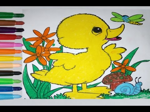 Animals Coloring pages - Coloring Books - Beautiful colouring ...