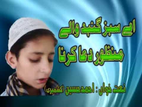 aay-sabaz-guband-wallay-manzor-dua-karna-by-hafiz-muhammad-ahmad-kasmerri