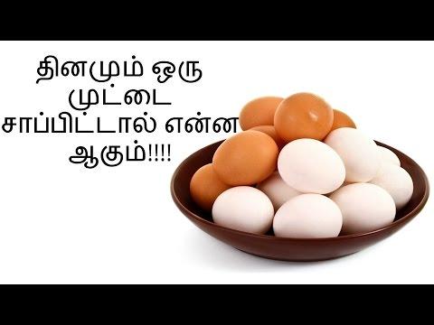 தினமும் முட்டை சாப்பிடுபவரா நீங்கள்!!! - Health benifits of egg in tamil - health tips tamil thumbnail