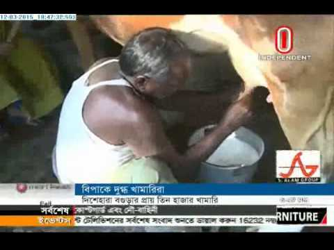 Bogra dairy firm, 12 March 2015