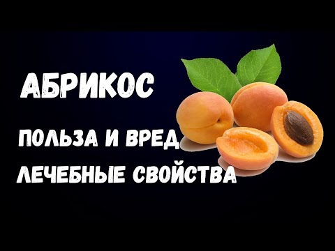 Абрикос Польза и Вред Лечебные Свойства