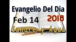 Evangelio del Dia- Miercoles 14 Febrero 2018- Miercoles de Ceniza- Sangre y Agua