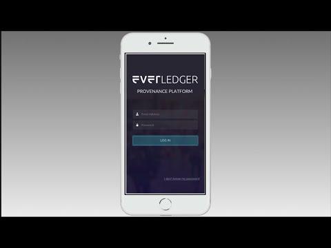 Everledger Diamond Provenance Platform