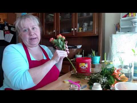 waste-not-wednesday---how-to-root-roses-from-a-bouquet