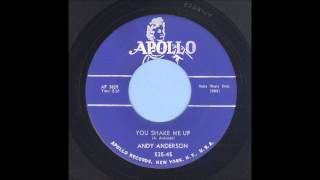 Andy Anderson - You Shake Me Up - Rockabilly 45