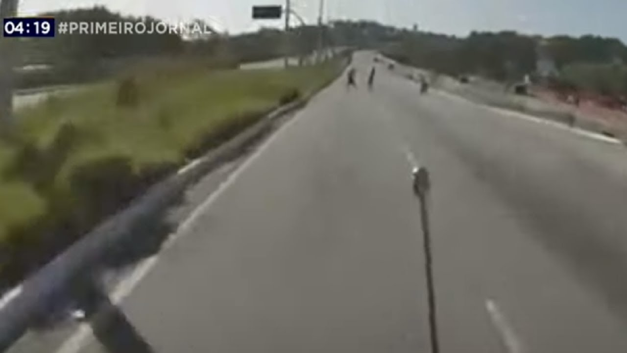 Notícias - Trio invade avenida para tentar roubar moto em SP - online