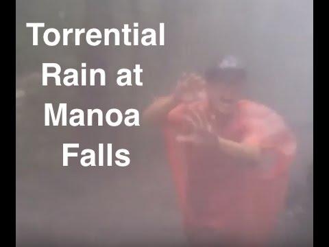 Incredible Hike in Hawaiian Rainstorm! Manoa Falls 11/21/16