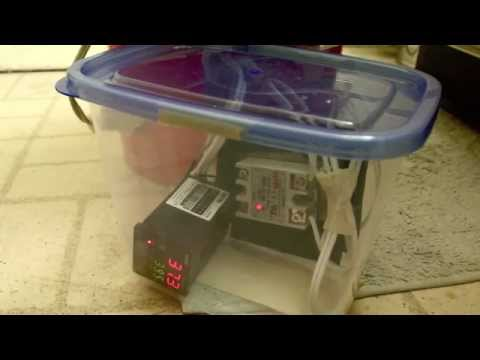 Temperature controlled bath for developing C-41 Film - YouTube