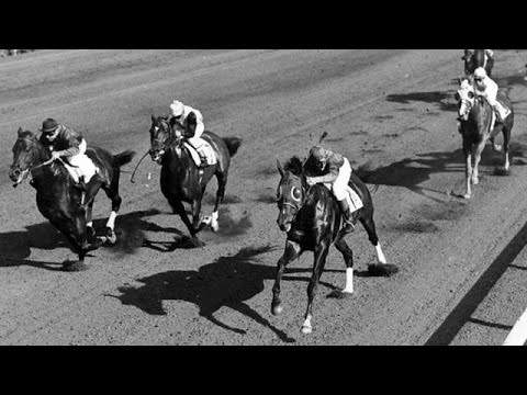 """Fast Track To The Hall Of Fame"" - Hollywood Park Documentary"