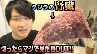 【超絶閲覧注意】クジラの腎臓を切ったら見た目が本当にグロテスクだった・・・