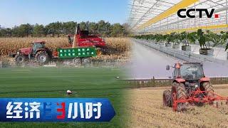 传统农民靠它变身上班族 种地小白靠它轻松管理植物工厂 「经济半小时」20210513 | CCTV财经 - YouTube