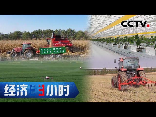 传统农民靠它变身上班族 种地小白靠它轻松管理植物工厂 「经济半小时」20210513 | CCTV财经