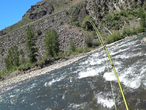 Truckee River Fishing - June 2, 2018