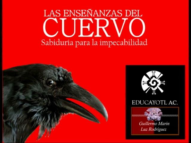 338.- 24 Las Enseñanzas del Cuervo. Audio