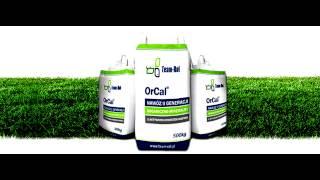 OrCal nawóz organiczno-mineralny