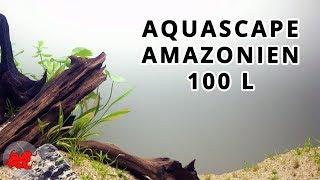 Aquascape aquarium Amazonien (100L)