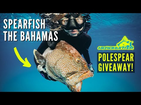 How To Spearfish The Bahamas (HEADHUNTER ROLLER POLESPEAR GIVEAWAY!!!)