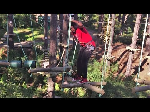 Adrenalin Forest - Wellington - Course 3 | High Ropes & Obstacle Course | Flying Foxes | New Zealand