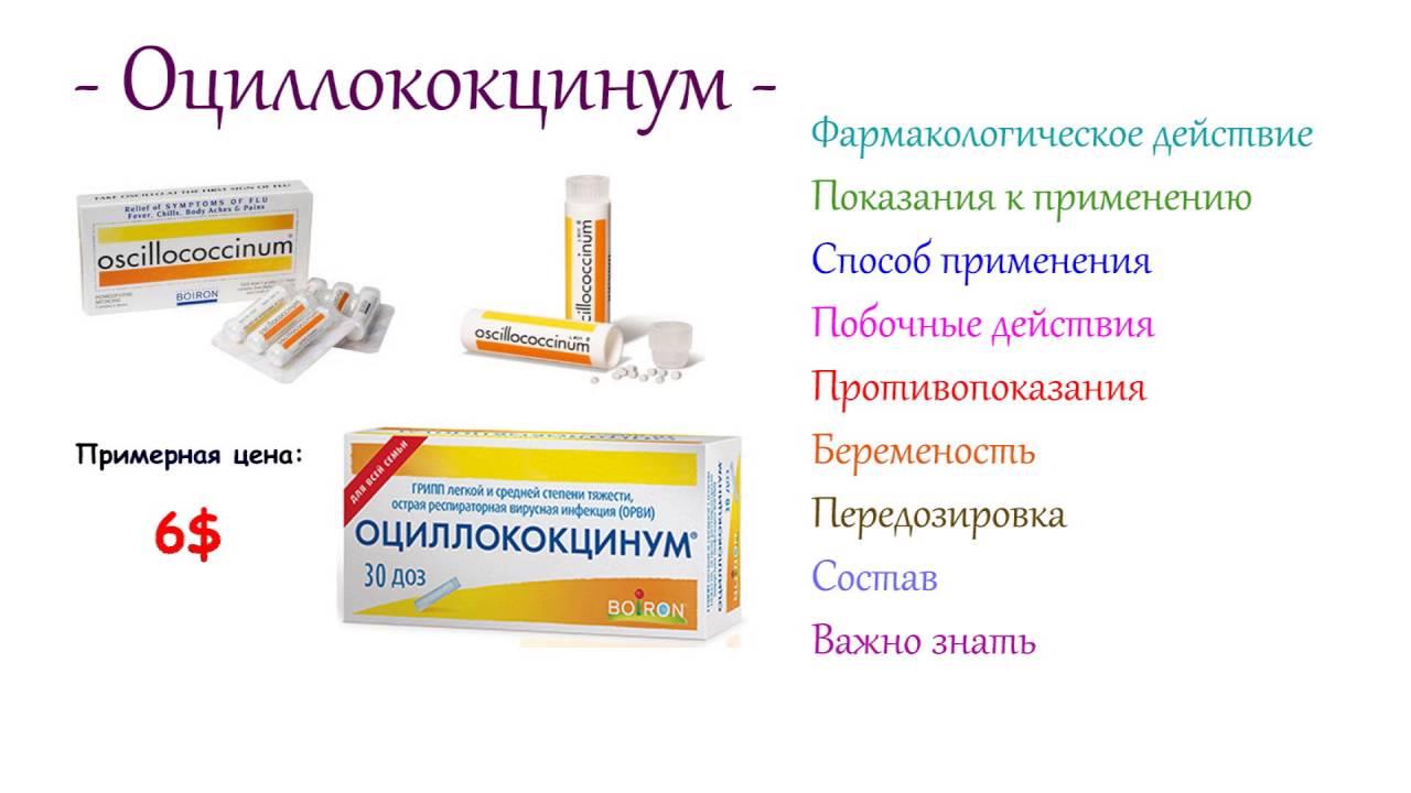 Оцилумкокцинум инструкция