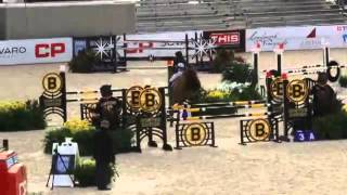 Video of ZOPALA ridden by SIMA MORGELLO from ShowNet!