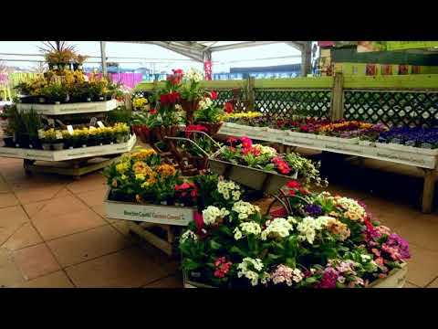AWESOME Garden Centre Design