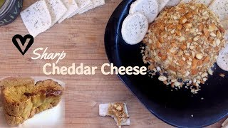 Vegan Sharp Cheddar Cheese Recipe - 2 Ways + Vegan Grilled Cheese Sandwiches!