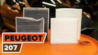 Achteraslager vervangen PEUGEOT 207: werkplaatshandboek
