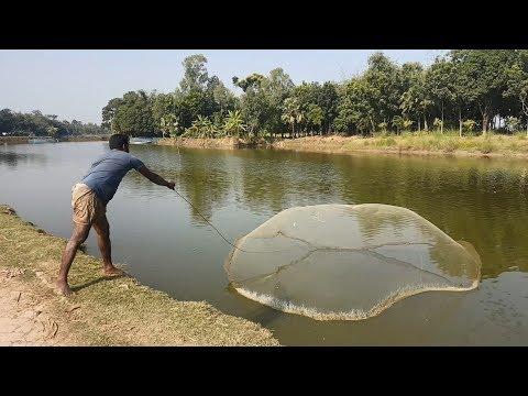 Net Fishing |