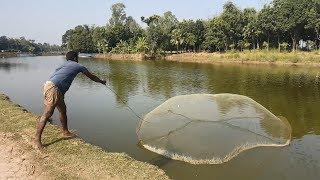 Net Fishing | Catching Big Fish With Cast Net | Net Fishing in the village (Part-77)