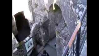 Ireland Road Trip-Blarney Castle 3