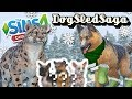 Snow Leopard and German Shepard Puppies?! 🐶🎄