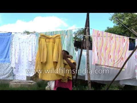 Laundry in India: open-air dhobi ghat in Delhi