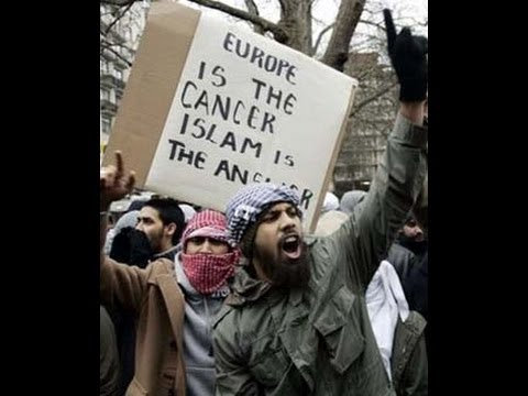 muslims in europe opinion on gays