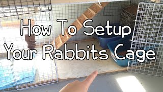 How To Setup Your Rabbits Cage