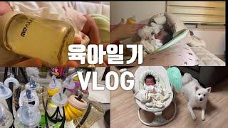 [육아VLOG]한달된신생아키우기/강아지랑아기랑같이키우기…
