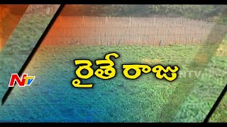 Successful Large Scale Vegetable Cultivation by Young Farmers in Nalgonda | NTV
