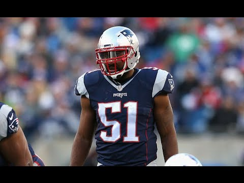 Jerod Mayo | Career Highlights