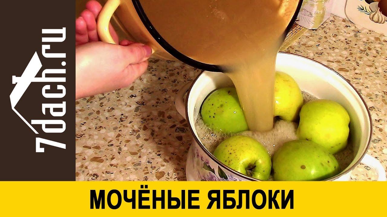 фото яблоки моченые