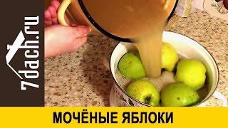 Моченые яблоки - 7 дач