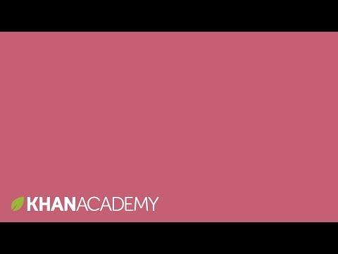 Panic disorder | Mental health | NCLEX-RN | Khan Academy