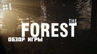 Обзор игры The Forest! Обновление 0.30! Новая яхта! Разрешение маленькое( Мой фэйл(Фэйл с разрешением( Играем в игру под названием The Forest! Подпишись на меня и не пропусти новые видео! Канал..., 2016-01-01T22:34:10.000Z)