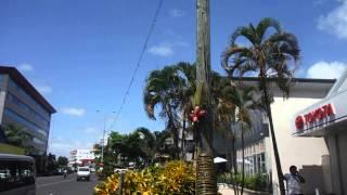 サモア独立国の首都アピアの街中。Apia town in Samoa