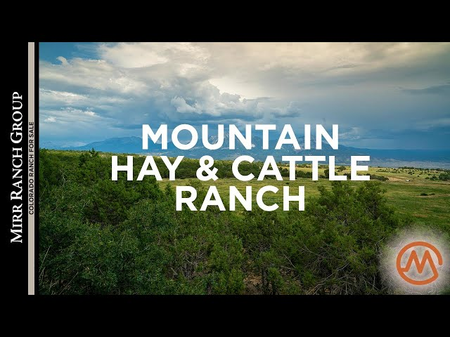 Colorado Ranch For Sale - Balcony Farm